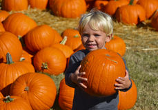 Child Carrying Pumpkin Royalty Free Stock Photos