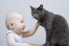 The child and cat Royalty Free Stock Photography