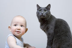 The child and cat. On grey background Royalty Free Stock Photography