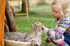 Child and cat Royalty Free Stock Images