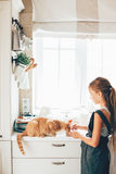 Child with cat at the kitchen. Kid girl feeding ginger cat at the kitchen Royalty Free Stock Photos