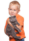 Child with cat stock photos