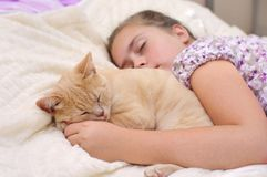 Friends sleep soundly. Child with cat sleep on the bed stock image