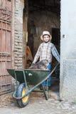 Child with cat on the wheelbarrow. Child carrying cat on the wheelbarrow Stock Images