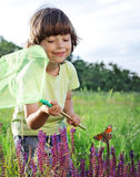 Child catches a butterfly. Outdoors stock photo