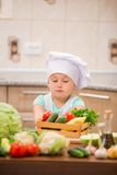 Child chef Stock Image