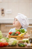 Child chef Stock Photography