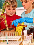 Child in chemistry class stock photo