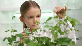 Child in Chemistry Lab, School Science Growing Seedling Plants Biology Class stock image
