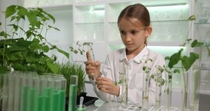 Child in Chemistry Lab, School Science Growing Seedlings Experiment, Biology 4K stock video