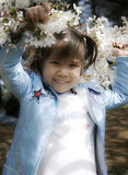 Child and cherry blossom. Cute girl and cherry blossom on spring Royalty Free Stock Image