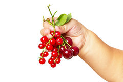 Child with a cherry and red currant Stock Photos