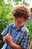 Child and Chick. Cute little boy (6) holding a baby chicken in his hands in the garden of a farm outside Stock Images