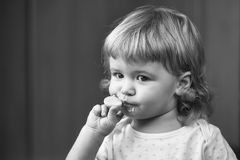 Child Childhood Children Happiness Concept. Cute little boy eating stock images