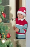 Child and christmas tree Stock Photography