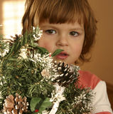 Child and Christmas tree. Child hiding behind Christmas tree Stock Images