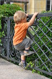 Child climbing fence. Young child climbing an ancient fence Stock Image
