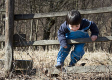 Child climbing the fence. Small child boy climbing the wooden farm fence Royalty Free Stock Photo