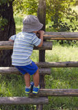 Child climbing the fence. Child boy climbing over wooden fence into a garden or orchard, back view Royalty Free Stock Photography