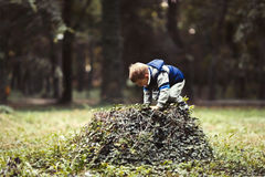 Child climbing in park. And playing Royalty Free Stock Photos