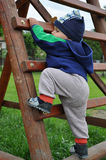 Child climbing step ladder. Young child climbing wooden step ladder Stock Images
