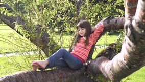 Child is climbing the tree. Little girl is playing in the outdoor. Adventure of a children. Happy carefree childhood. Child is climbing the tree. Little girl is stock video