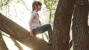 Child is climbing the tree. Little girl is playing in the outdoor. Adventure of a children. Happy carefree childhood. Child is climbing the tree. Little girl is stock video footage