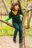 Child climbing in the tree lokking away Stock Images