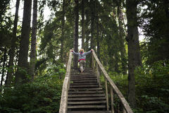 Child climbs an old wooden ladder. Upward  in the wood Stock Photos