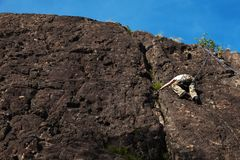 Child climbs on rock wall. Outdoor activities on a beautiful sunny day Stock Photos