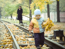 Child collecting autumn leaves Stock Photography