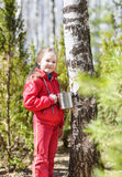 Child collects birch sap in spring forest Royalty Free Stock Photo