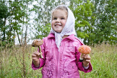 The child collects mushrooms Stock Photography
