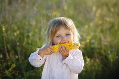 Free Child, Corn Royalty Free Stock Images - 32501989