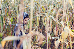 Child in corn field Stock Photos
