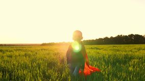 A child in the costume of a superhero in a red cloak runs across the green lawn against the backdrop of a sunset toward. The camera. The boy shows the flight of stock video