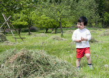 Child in countryside Royalty Free Stock Image
