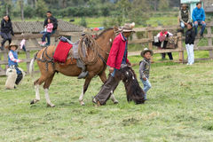 Child and a cowboy walking outdoors in Ecuador. June 3, 2017 Machachi, Ecuador: a child and a cowboy walking with a horse outdoors in the ANdean town Stock Image