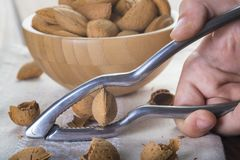 Free Child Cracking Almonds Royalty Free Stock Image - 112999416
