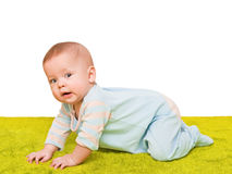 The child creeps on a soft green carpet Royalty Free Stock Photo