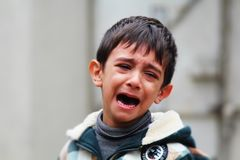 Child, Crying, Kid, Boy, Sad, Young Royalty Free Stock Photo