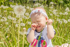 Child is crying in the meadow with dandelions Stock Images