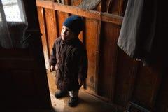 Child curiosity Stock Photography