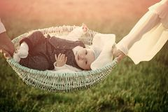 Child custody. Infant lie in basket held in hands on green grass stock images