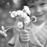 Child with dandelion Royalty Free Stock Photos