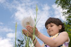 Child with dandelion stock photos