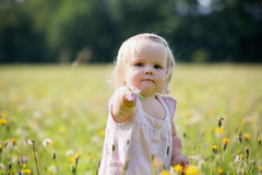Child at dandelion meadow in summer Stock Images