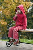 Child with dandelion sitting on bench Stock Photos