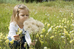 Child with dandelions Royalty Free Stock Photo