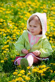Child among dandelions Stock Images
